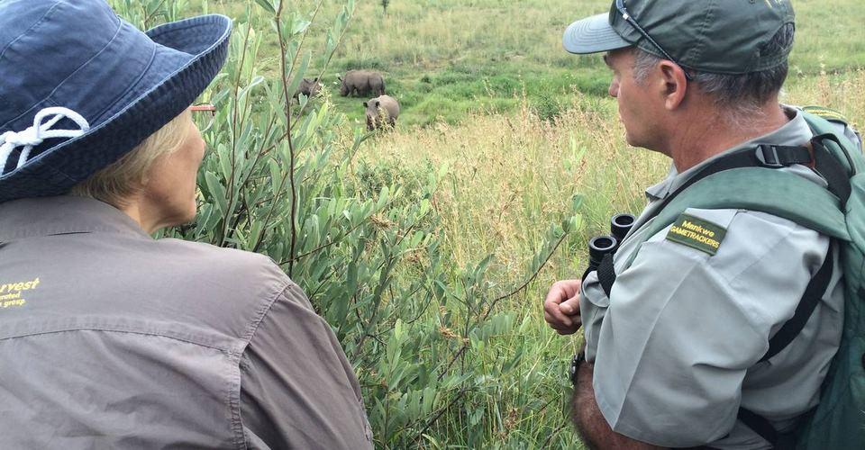 Rhino-Tracking