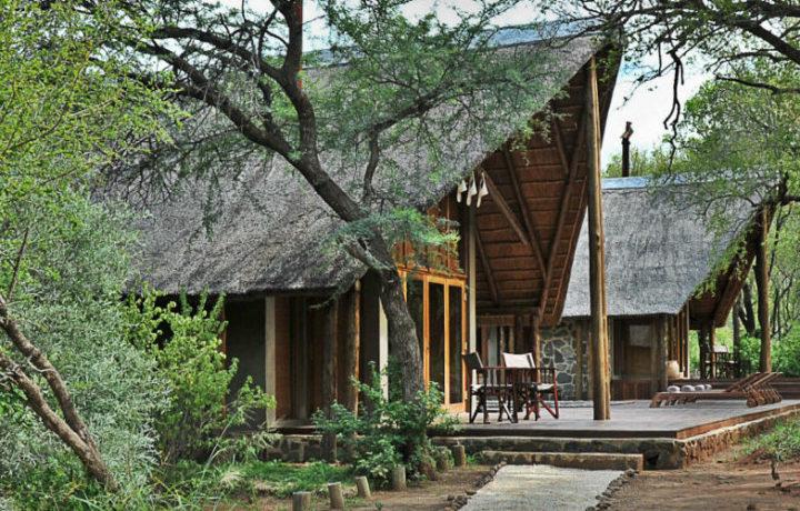 Black Rhino Game Lodge Safari in Pilanesberg