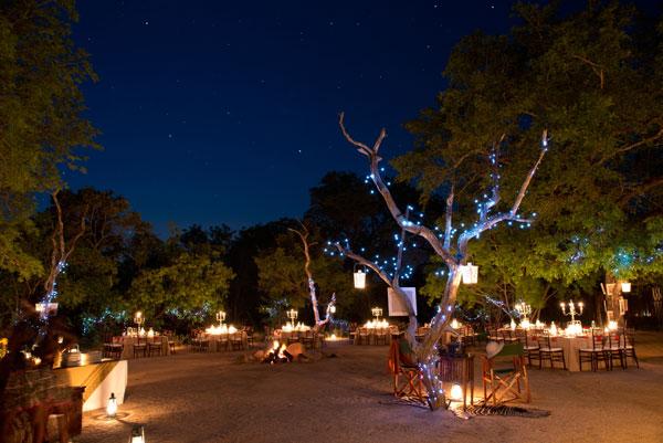 A Pilanesberg wedding at night