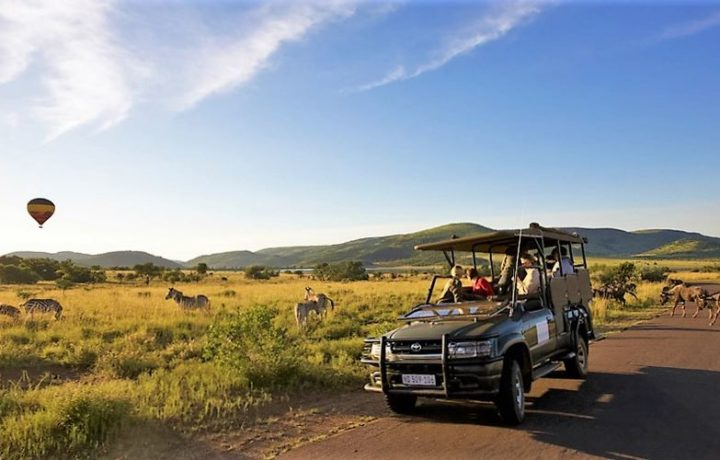 Day Tour in Pilanesberg National Park